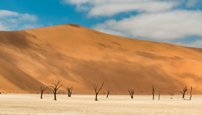 La dune Big Daddy (350m)
