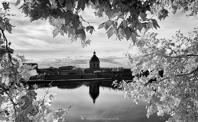 Dome de la Grave - Toulouse