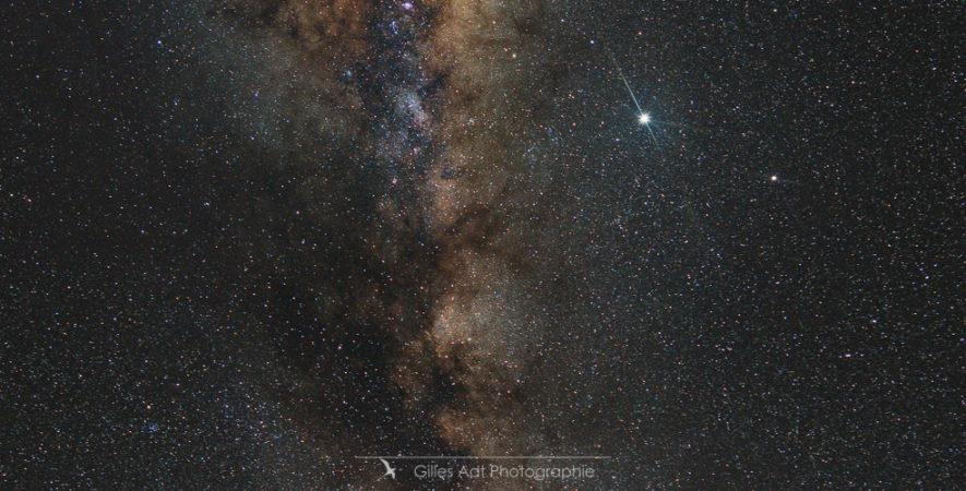 L'arbre et la Voie Lactée